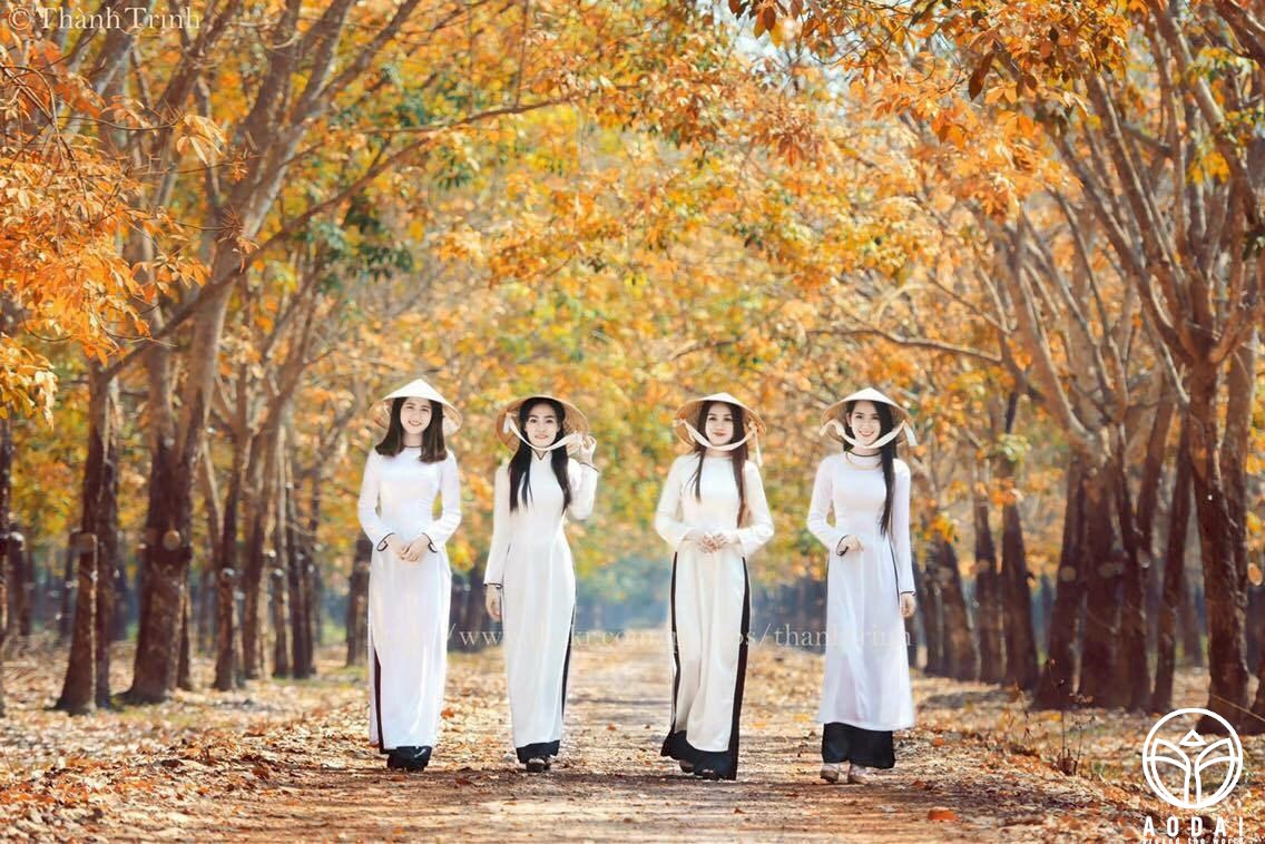 Ao Dai Photo f2faaf24-109a-48ef-97c2-a53c5a4c5210